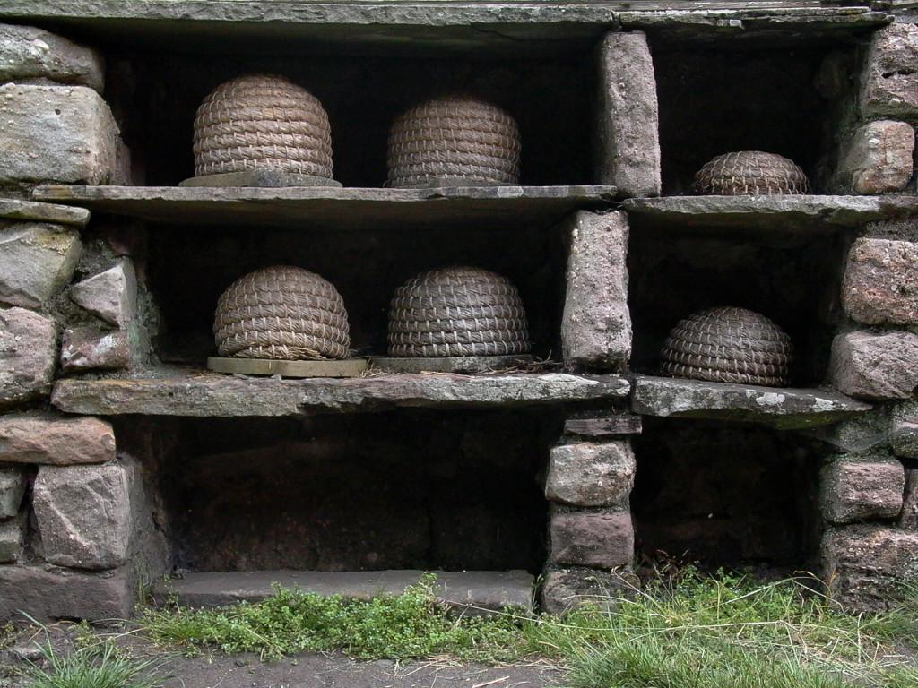 beehive-1570866